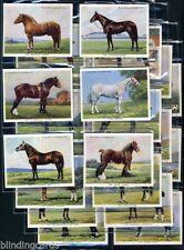 Sammelbilder (bis 1945) mit Pferde-Motiv