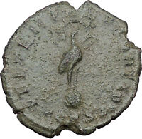 CONSTANTIUS II Constantine the Great  son Ancient Roman Coin Phoenix  i32231