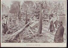 1896  - PARIS  ETALAGE DES BOUQUINISTES  DEVASTES  H619