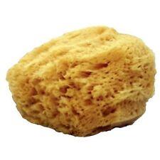 Mehron Sponge - Natural Sea