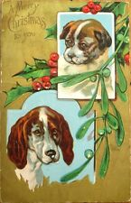 Dog/Puppy 1910 Christmas Postcard - Gold-Embossed, Color Litho
