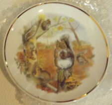 NEW BOXED WILDLIFE OF BRITAIN SQUIRRELS COLLECTORORS PORCELAIN PLATE BERESFORD