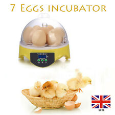 Temperature Control Poultry Mini Hatcher Fully Automatic Digital Egg Incubator