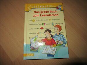 Lesemaus 1. Lesestufe, Das große Buch zum Lesenlernen, so gut wie neu!