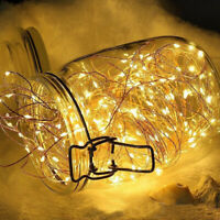 LED String Light Battery 1M/ 2M 3M30 LED Led Copper Wire Lamp Shape Lamp String