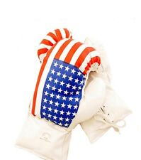 Kids 6 Oz USA Faux Leather Boxing Gloves SPARRING YOUTH PRACTICE TRAINING MMA