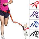 Nylon Dog Leash Rope Training Slip Lead Strap Adjustable Traction Collar EA