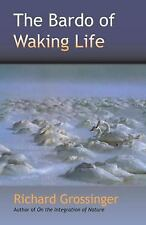 The Bardo of Waking Life, Richard Grossinger, Good Book