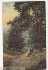 Addington Hills near Croydon, 1905 R & C Postcard, B509