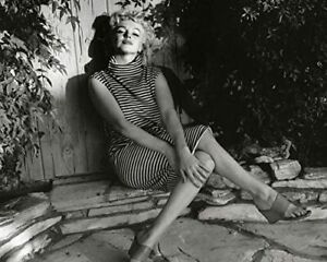 "Marilyn Monroe 1955 Garden Fence Shadow Photo (Size 8"" X 10"")"