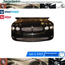 New Jaguar X-Type Lower Grille Mesh XTLG1