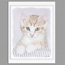 6 Yellow Tabby Kitten Cat Blank Art Note Greeting Cards