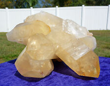 LEMURIAN SEED Golden Healer Quartz Crystal Point w/ Record Keepers 8 Pound Large