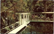 Ft. Myers, Florida, Thomas A. Edison, Home, Swimming Pool - Postcard (V)