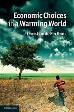 Economic Choices in a Warming World by De Perthuis, Christian