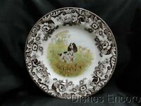 Spode Woodland English Springer Spaniel Hunting Dog: Dinner Plate (s), Box