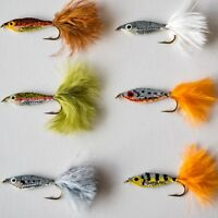 6 Epoxy Baitfish Minnows Fry Trout Fly Fishing Flies  by Dragonflies