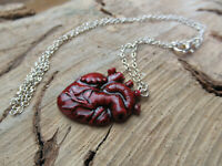 Sterling Silver And Polymer Anatomical Heart Pendant with Chain