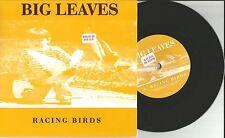 BIG LEAVES Racing Birds w/ UNRELEASED TRK UK 7 INCH Vinyl USA SELLER MINT 2009