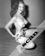 Tempest Storm Exotic Dancer / Burlesque star 8x10 PHOTO #2388