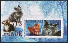 Guinea 2009 - Mi-Nr. Block 1787 ** - MNH - Katzen / Cats