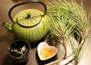 Pine Needle Tea Bags Wild Suramin ORGANINC Fresh Immunity BoostingVitamin A & C