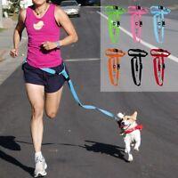 Extra Thick Adjustable Hands Free Leash Dog Lead + Waist Belt Jogging Running