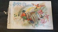 Rare 1888 Allen & Ginter Richmond VA Birds of the Tropics Cigarette Card Album
