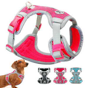 Reflective Padded Dog Harness No Pull Breathable Adjustable Dog Collar Ves XS-M