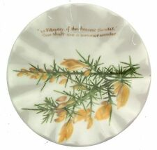 The Country Diary of an Edwardian Lady Winter plate - small size CP2342