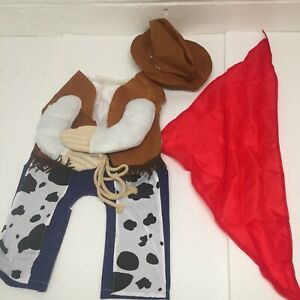 Halloween Large Cowboy 3 Piece Pet Costume