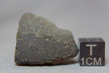Jbilet Winselwan CM2 Meteorite 5.42 grams with a section of fusion crust