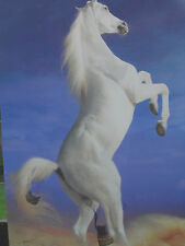 Icono! White Horse! 3d Foto! Poster! Lenticular! animales! 2 Fotos En 1!