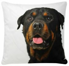 Rottweiler Perro impresión Chenille De Algodón Blanco 17 X 17 Funda De Cojín Sofá Cama Sofá