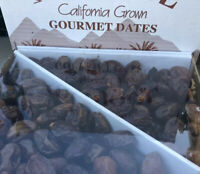 5LB CALIFORNIA FRESH SMALL COFFEE-DATES. JUICY AND SWEET.QUALITY DELICIOUS DATES