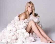 Gwyneth Paltrow 8x10 Photo 004
