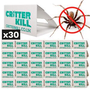 SPIDER PEST CONTROL KILLER GLUE TRAPS POISON FREE TRAP CRAWLING BUG X 30
