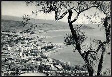 AD1117 Imperia - Provincia - Sanremo - Panorama dagli oliveti di Coldirodi