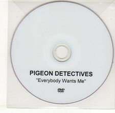 (EH673) Pigeon Detectives, Everybody Wants Me - DJ DVD