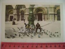 Cartolina Veneto - Venezia Ragazzi e Piccioni - VE 3658