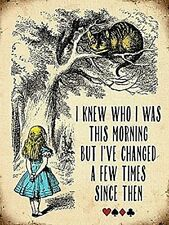 "Alice In Wonderland ""I knew who i was this morning, but..."" fridge magnet   (og)"