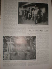 Printed photos work of the blacksmith 1903 ref U