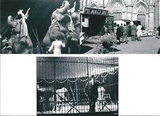 3 Photographies du Cirque Gruss-Jean Richard