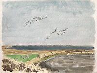 Karl Adser 1912-1995 Gänse im Stadil Fjord Jütland Nordsee Dänemark Seevögel