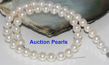 Certified Rare size 9.5-9mm  Genuine Saltwater Japanese  Akoya  pearl necklace