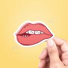 Teaser Lips Vinyl Sticker - Car Sticker, Vinyl Decal,Laptop Sticker