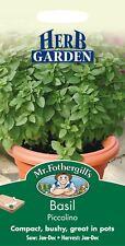 Mr Fothergills - Pictorial Packet - Herb - Basil Picolino - 300 Seeds
