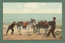 """1910'S PC - BOYS & STUBBORN DONKEYS ON A BEACH - """"OPPOSITION"""""""