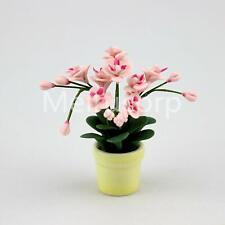 1/12 Scale Dollhouse Miniature Potted pink Phalaenopsis Ceramic flower pot 12067