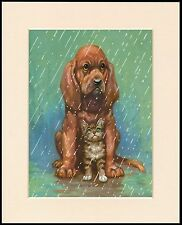 BLOODHOUND PUPPY SHELTERS KITTEN FROM THE RAIN CHARMING DOG PRINT READY MOUNTED